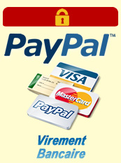 visa mastercard paypal